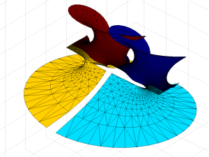 Gamma minimal surface extended by integration paths between the -1 and 0 singularities (blue patches).